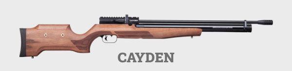 Benjamin Cayden .22